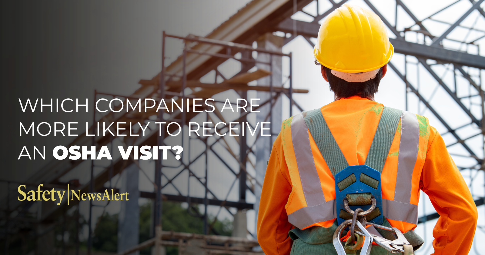 which companies are more likely to receive an OSHA visit